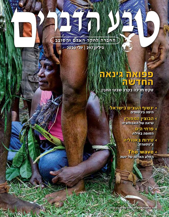 שער-המגזין-שבטי-התנין-חניכה